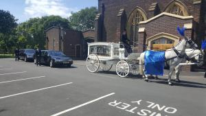 Traditional Horse Hearse Funeral Carriage